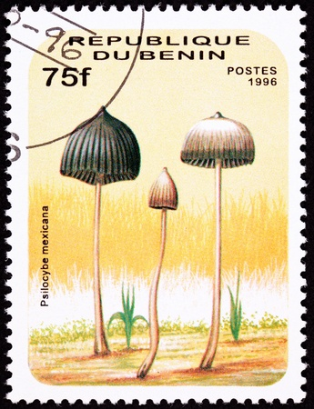 psilocybin: Teonanacatl psychedelic mushroom, Psilocybe mexicana.  Looks like Dr Seuss illustrated this.