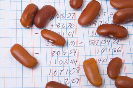 grid paper: Red Kidney Beans on a Ledger Book.  Accounting Joke