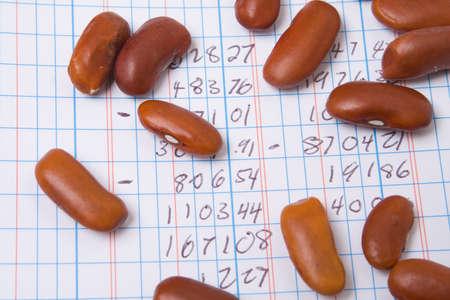 ledger: Red Kidney Beans on a Ledger Book.  Accounting Joke