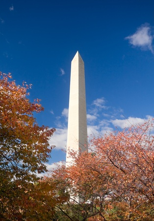 phallus: Orange leaves and blue sky surround the Washington Monument.  Washington, DC, United States.
