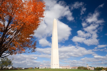 Orange leaves and blue sky surround the Washington Monument in Washington, DC, USA