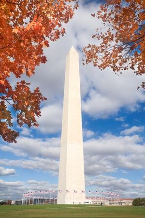 Washington Monument surrounded by orange leaves.