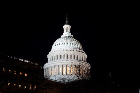 elected: Dome of the US Capitol building at night, in the winter.  Washington DC, United States.