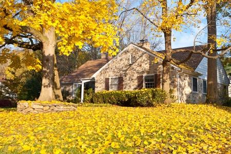 Eengezinswoning in een buitenwijk van Philadelphia. Gele Noorse esdoorn bladeren en boom