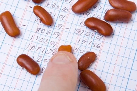Finger pointing at beans on top of an accounting ledger book.  Bean counter accounting joke. photo