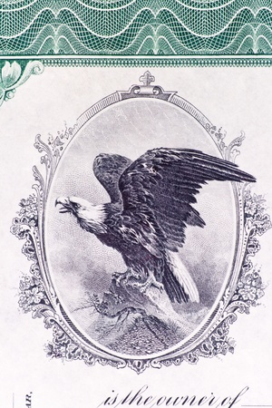 stock certificate: Close-up of a bald eagle on a U.S. Stock certificate issued in 1911.