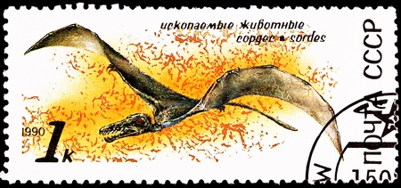 franked: USSR- CIRCA 1990:  A stamp printed in the USSR shows a Sordes Pterosaur, a family of flying animals that lived 150 million years ago, circa 1990.