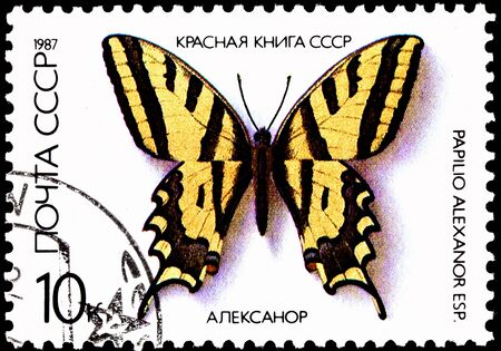 swallowtail: USSR- CIRCA 1987:  A stamp printed in the USSR shows Papilio Alexanor, the Southern Swallowtail Butterfly, circa 1987. Stock Photo