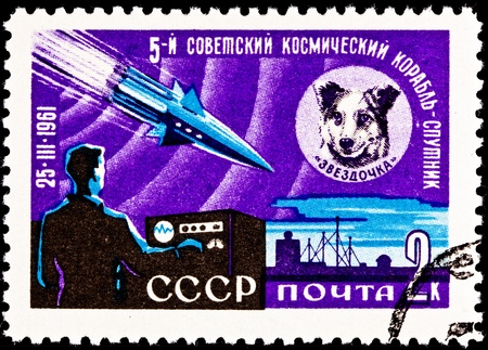 franked: USSR- CIRCA 1961:  A stamp printed in the USSR commemorates the launching of the space dog Chernushka aboard Sputnik 9, circa 1961. Stock Photo