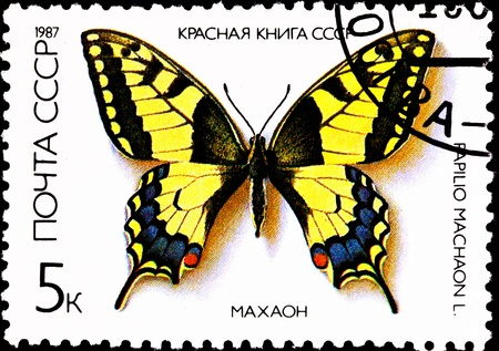 franked: USSR - CIRCA 1987:  A stamp printed in USSR shows the Old World Swallowtail Papilio machaon, also known as the Common Yellow Swallowtail, circa 1987.
