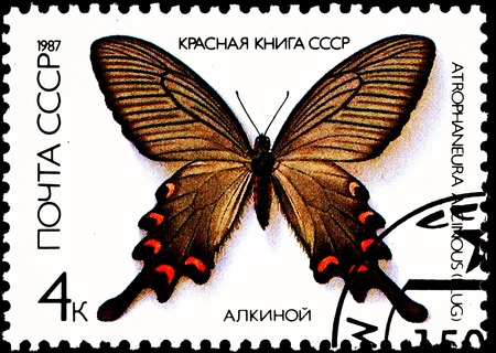 franked: USSR - CIRCA 1987:  A stamp printed in USSR shows the Chinese Windmill Butterfly, Atrophaneura alcinous, circa 1987. Stock Photo
