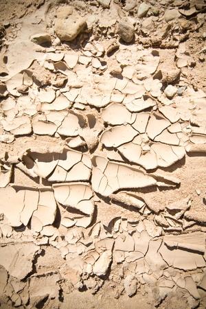 full frames: Full Frame Cracked Dried Mud, New Mexico Desert