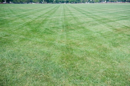 crisscross: Grassy lawn with criss cross mowing marks.  Wide angle lens