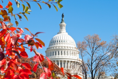 capitol: U.S. Capital building in Washington, DC in the fall.
