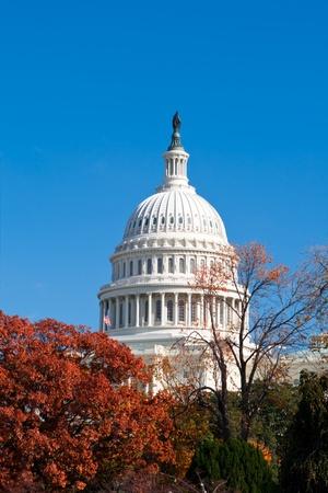 U.S. Capital building in Washington, DC in the fall. photo