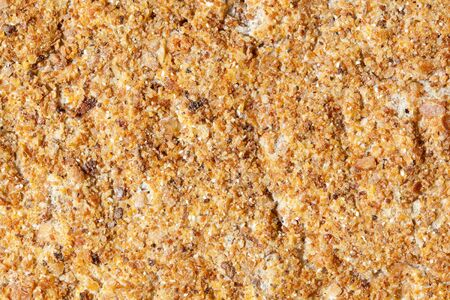 Extreme closeup of a cracker with a rough sandpaper like texture.  Shot with macro lens.