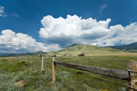 cattle wires: Alpine Meadow on the Enchanted Circle, Central Northern New Mexico, about 8000 feet