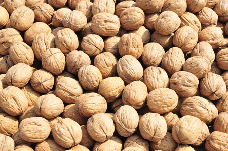 Walnuts as the background texture, close-up images