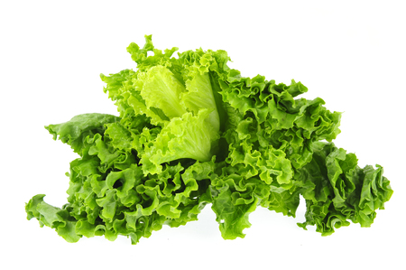 agronomic: Lettuce on a white background
