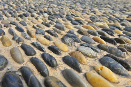 rigidity: The pebbles on the ground