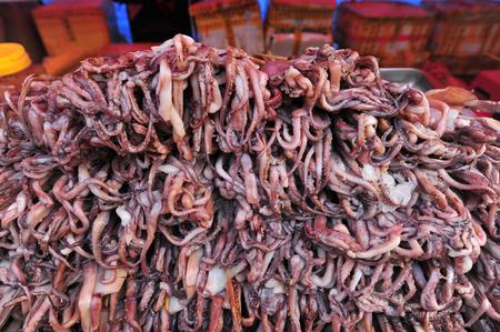 coal fish: Stalk of squid Stock Photo
