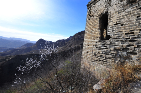 ancient great wall: The ancient Great Wall