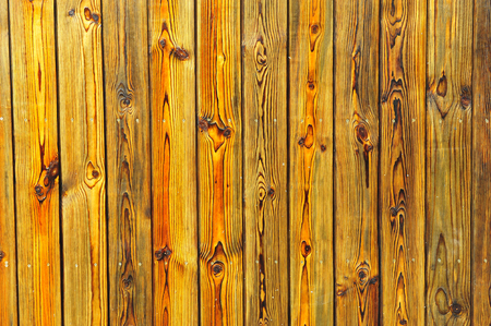 Wood grain as the background