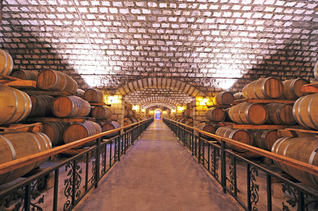 Wine cellar and wooden barrels