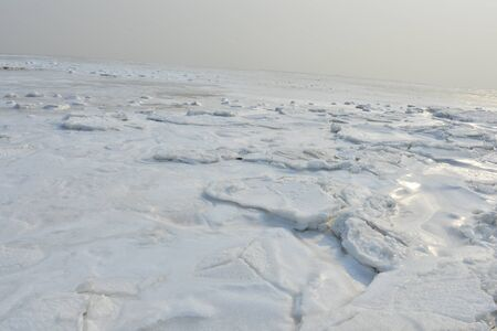 On winter sea ice 스톡 콘텐츠