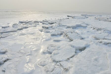 On winter sea ice Archivio Fotografico