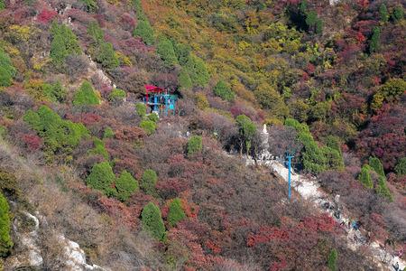 autumn hillside scene Stock Photo