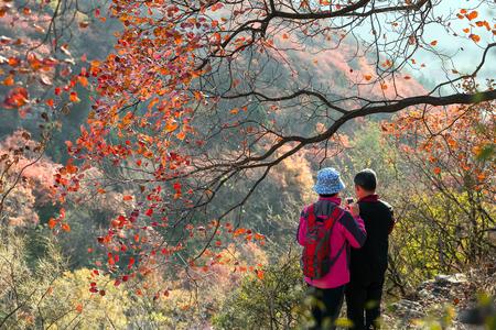 登山家と秋の山