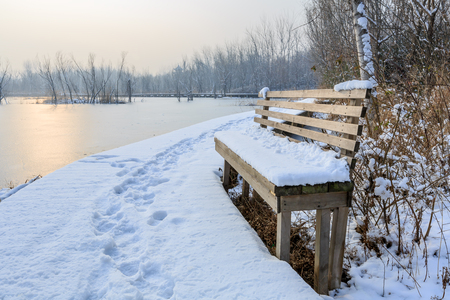 The wetland scenery in the snow Stock Photo