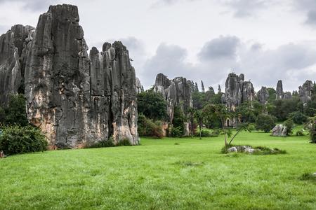 Stone Forest Landscape Reklamní fotografie