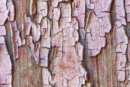 Vintage wooden door plank texture background material