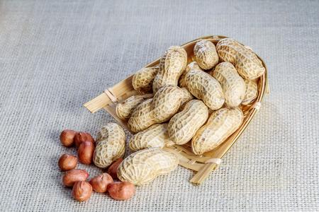 peanut Stok Fotoğraf