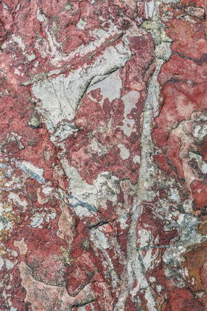 Iron-bearing limestone surface texture