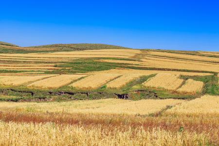 Zhangbei Prairie Tianlu Terraces