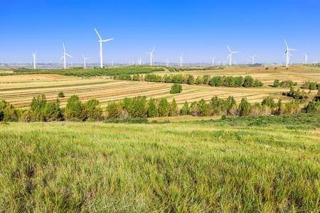 Rural scenery on Prairie Road 新聞圖片