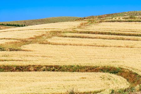 Terraced rural scenery on the prairie sky road