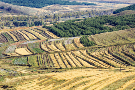 Terraced fields on Zhangbei grassland 版權商用圖片