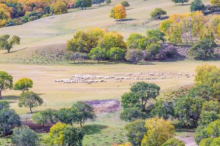 Ulan Buddhism grassland dam autumn