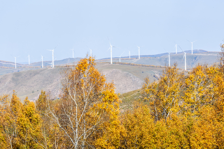 Wind power on the Bashang grassland