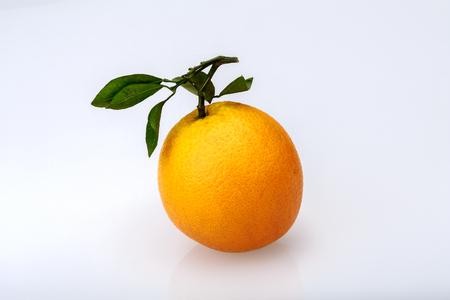 Navel orange 版權商用圖片
