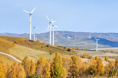 Prairie wind power surrounded by golden yellow birch forest