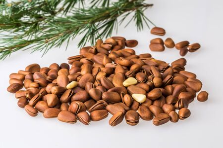 Pine nuts on white background Фото со стока
