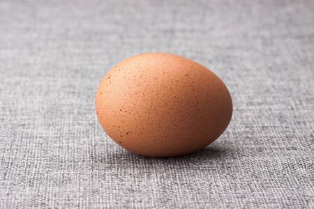 One egg Stock Photo