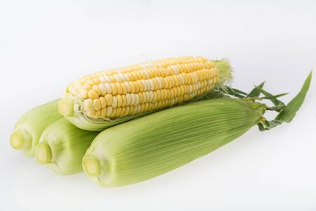 Fresh sweet corn on white background