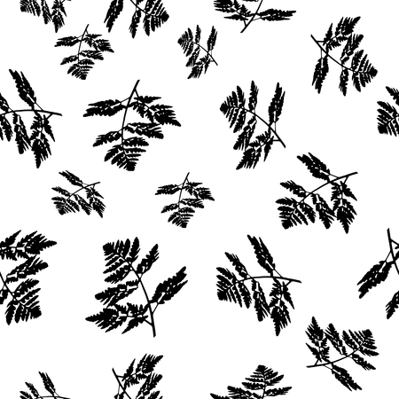 A seamless pattern square plant texture of black carved leaves is in the illustration