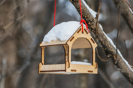 A new yellow bird and squirrel feeder house from plywood with white snow on the roof is hanging on a red rope on a brown tree in a park in autumn. 免版税图像